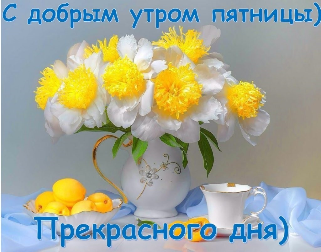 Позитивные фото пятницы утро