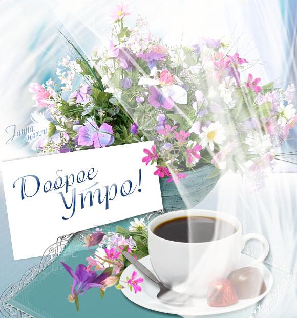 живет открытка с добрым утром с цветами много для начинающих пояснит